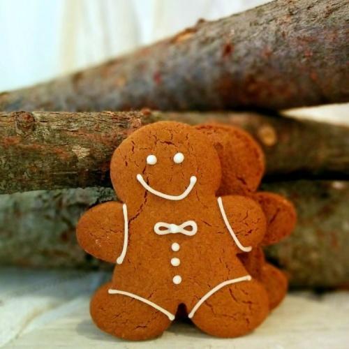 Biscuits Pain d'épices (2)