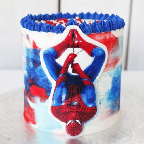 Gâteau Homme araignée - 12 à 15 portions